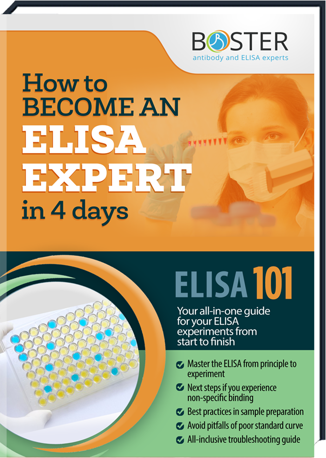 Get your free Handbook about the ELISA-Tecnique