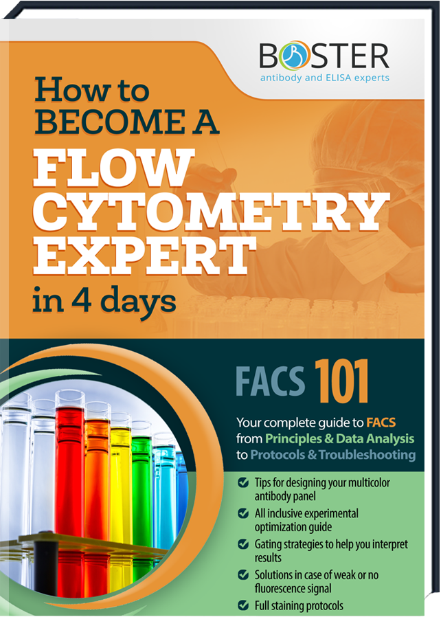 Get your free Handbook about the Flow Cytometry-Tecnique