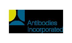 Antibodies Incorporates
