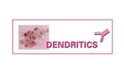 Denditrics
