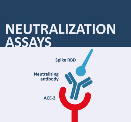Neutralisation Assay