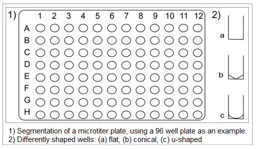 Example of a microtiter plate with 96 wells, showing the differently shaped wells